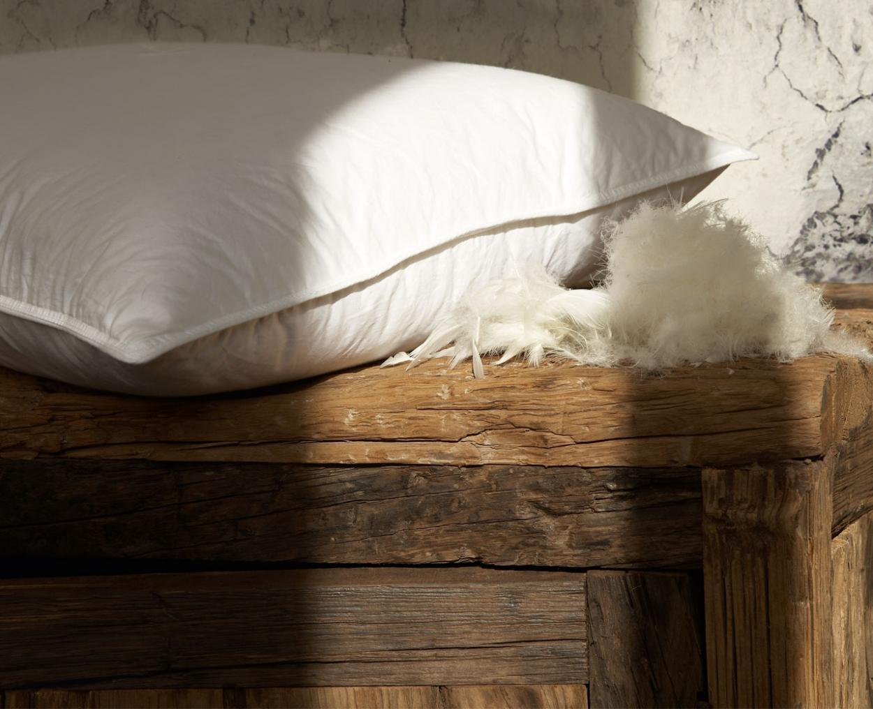 candia-pillow-naturalcollection-productpage-feather-and-down-01