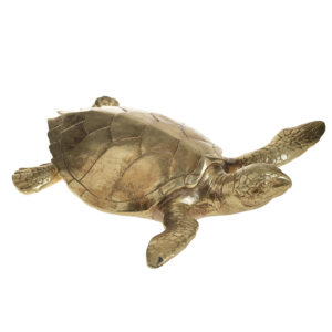 Χελώνα